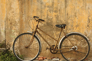 Día Mundial de la Bicicleta: varias actividades en Montevideo
