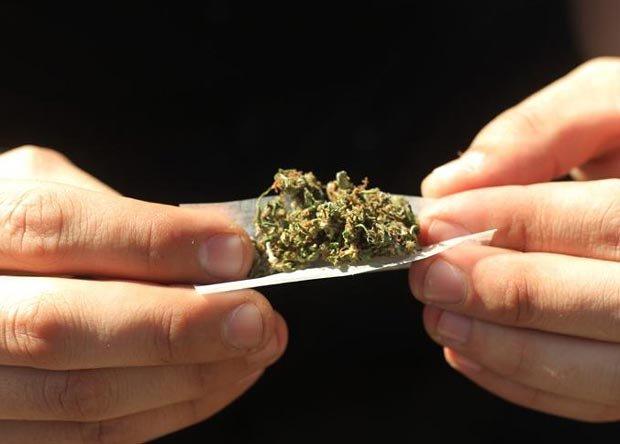 Advierten efectos negativos de demorar venta de marihuana