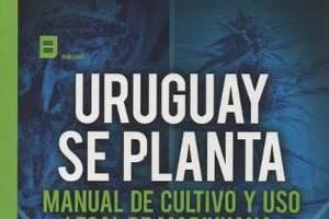 Proderechos publicó su manual de cultivo de marihuana
