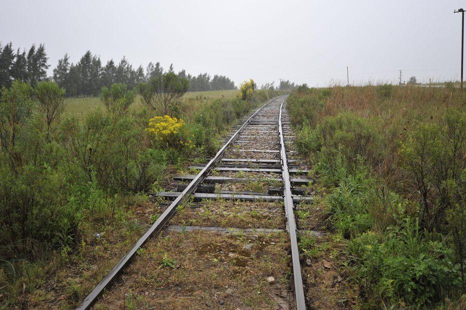 Un tren de acá a la China