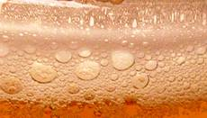 "Blancos denuncian ""estrategia"" del FA contra Semana de la Cerveza"