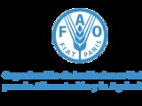 La columna de la FAO