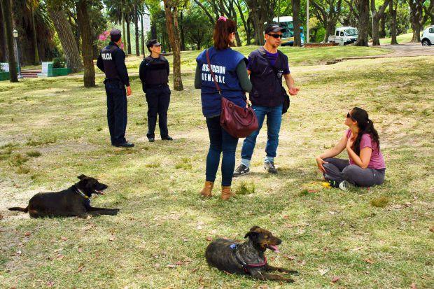 Cantidad de perros en Uruguay es