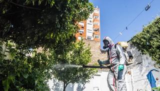 """MSP advierte """"temporada complicada"""" con zika, chikunguña y dengue"""