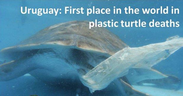 En Uruguay se usan mil millones de bolsas de nylon por año