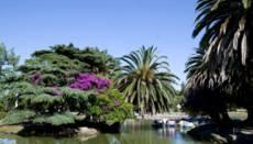 Vaciarán lago del Parque Rodó para limpiarlo y convocarán a nuevas atracciones recreativas