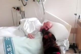El feliz reencuentro de un perro de asistencia y su amo en el hospital