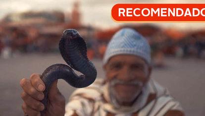 RECOMENDADO: Martes marroquí