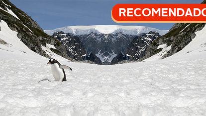 RECOMENDADO: Antártida reflejada