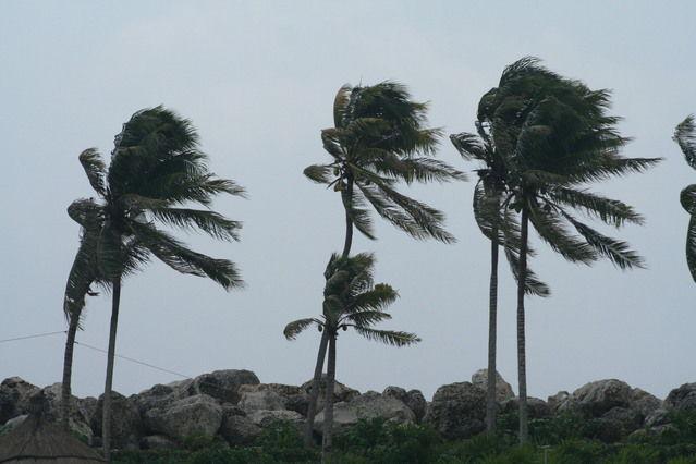 Advertencia naranja para 5 departamentos por vientos fuertes