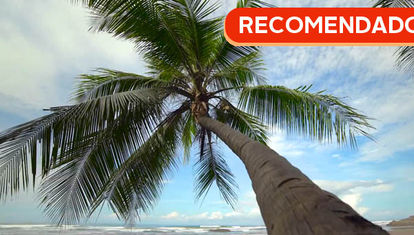 RECOMENDADO: Rica Costa Rica