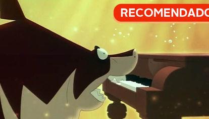 RECOMENDADO: El tiburón pianista