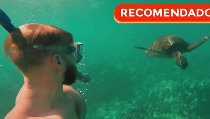 Viajes: Otro Maui para decirle gracias