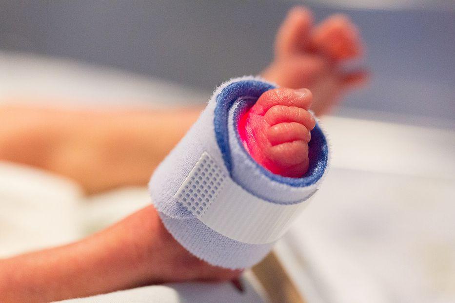 Sacar el feto y ponerlo a incubar, el proyecto de una 'lilita'
