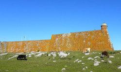 Contenido de la imagen Parque Nacional San Miguel