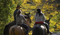 Contenido de la imagen Un país para andar a caballo