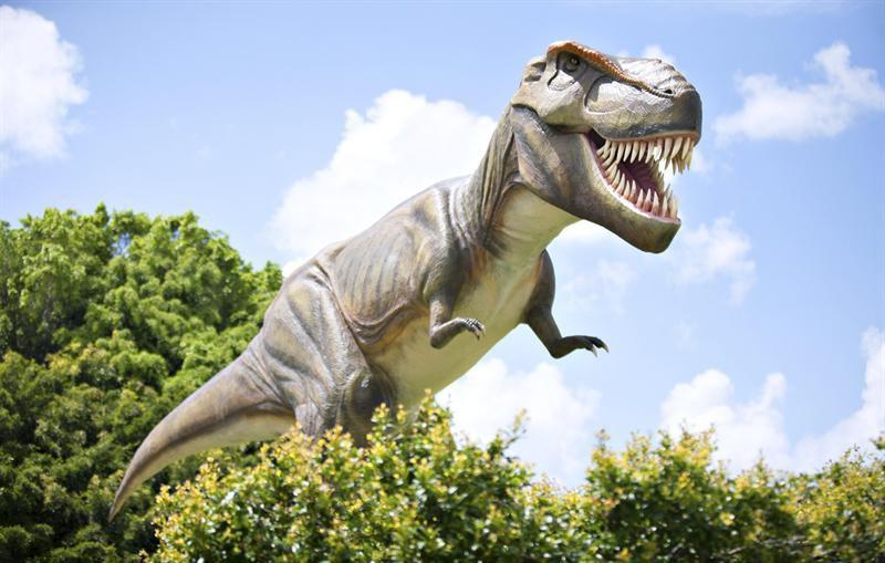 Hallazgo de un nueva especie de dinosaurio en Argentina