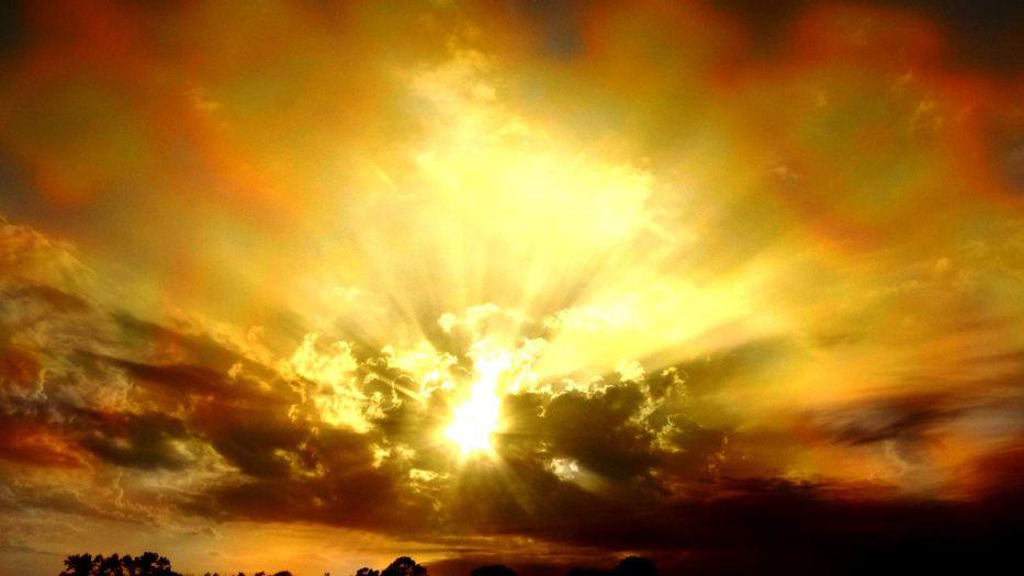 Al sol
