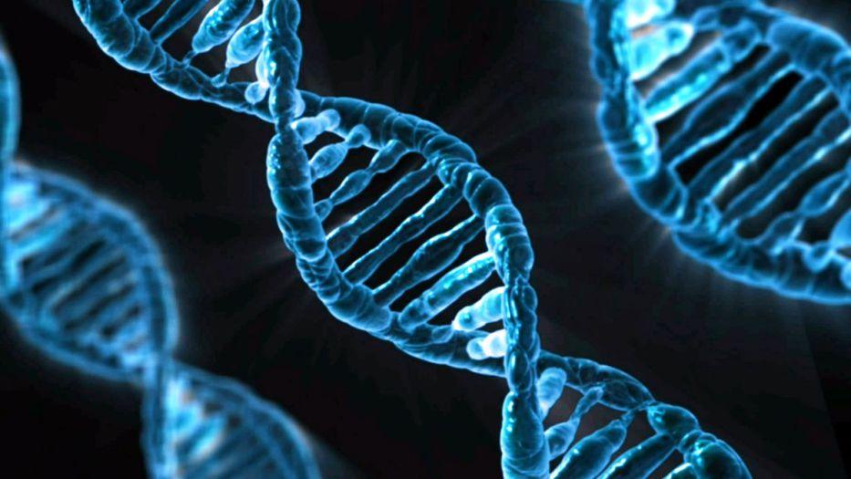Genes al rescate