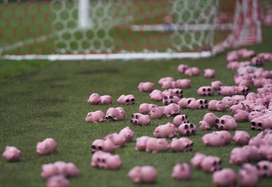 La 3000 Plástico De Los A Cerdos Hinchas Del Charlton Tiraron Cancha g6Ybf7y