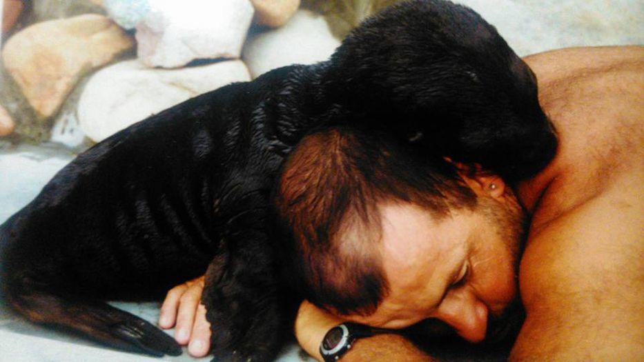 El hombre que amaba a los animales