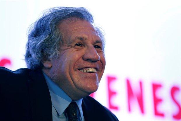 Luis Almagro / Foto: EFE / José Méndez