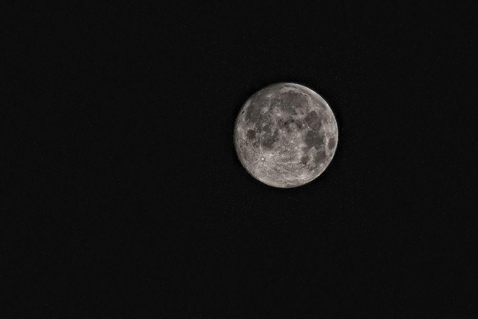 SpaceX fichó al primer turista que viajará a la Luna