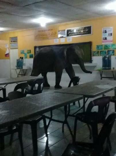 Inicio de clases