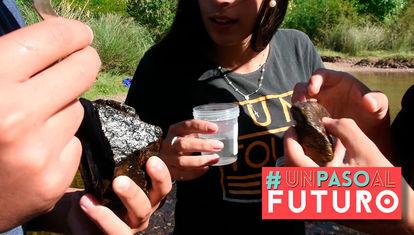 Ciencia que contagia: estudiantes de Latinoamérica juntos por la ciencia