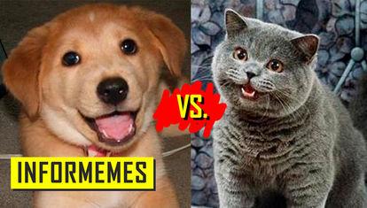 ¿Quién es más popular?