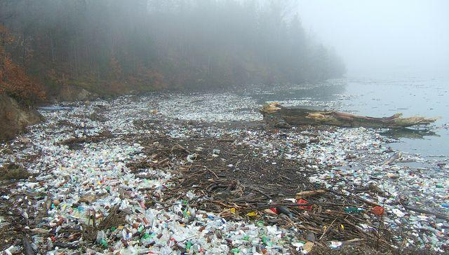 Si no cuidamos el planeta...