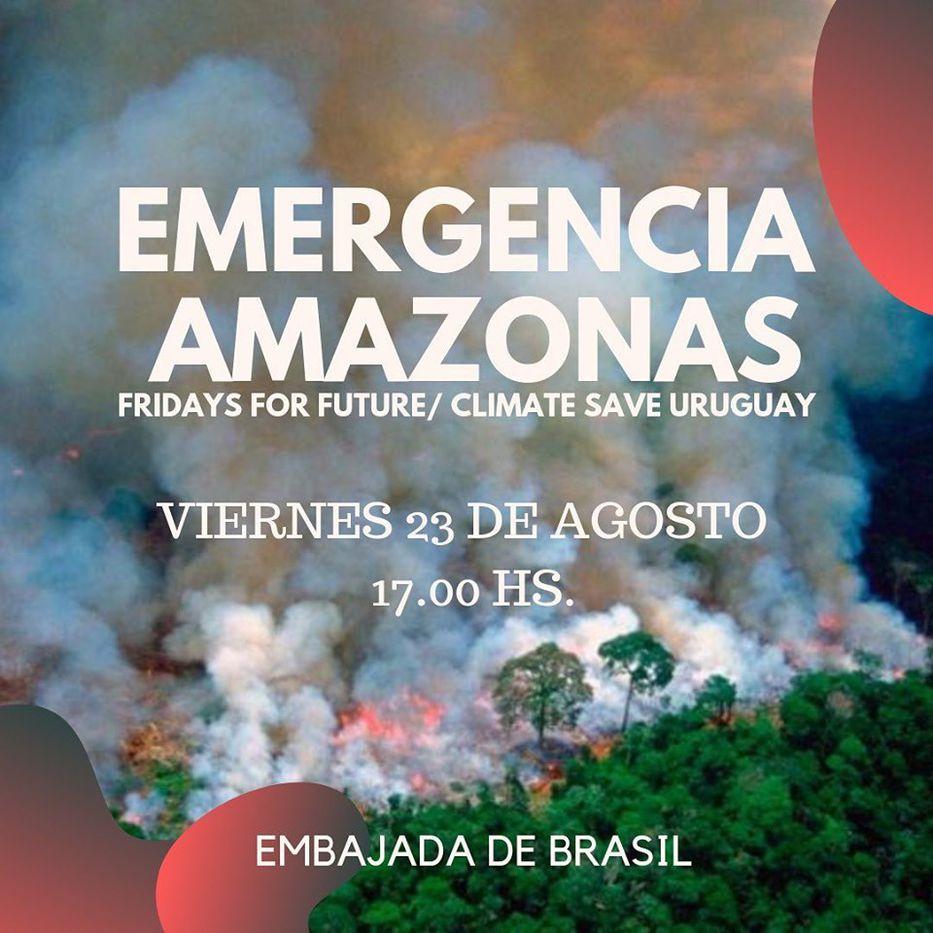Fridays For Future llama a concentración ante embajada de Brasil — Emergencia Amazonas