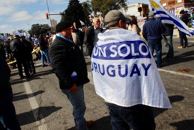 Foto: Gastón Britos | FocoUy