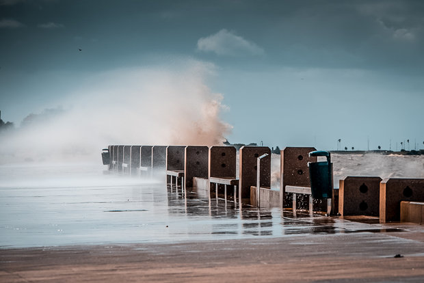 Foto: Javier Noceti | Montevideo Portal