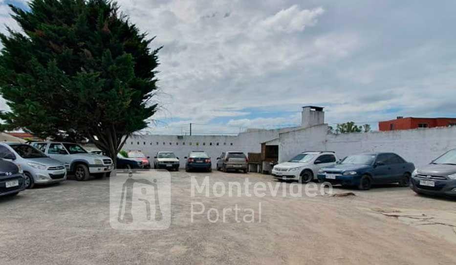 17 personas detenidas por robo organizado de autos en Montevideo y Minas - Montevideo Portal