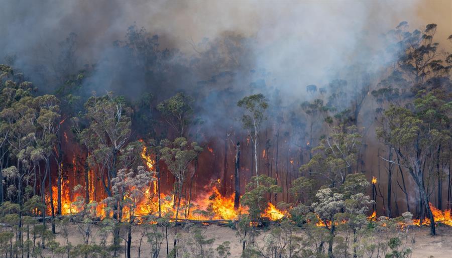 #arsonemergency