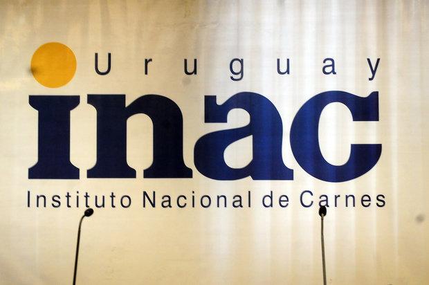 María Inés Hiriart / FocoUy
