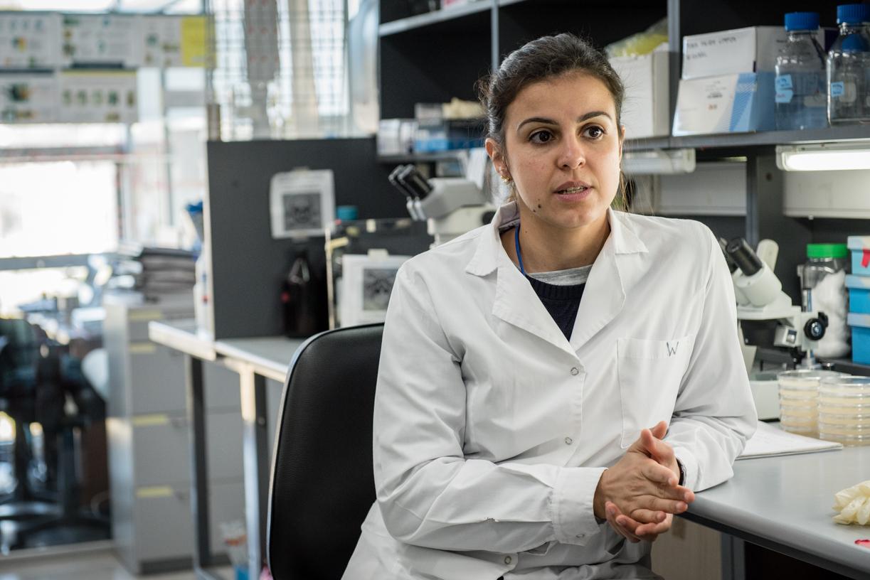 738649 - Investigadores uruguayos diseñaron un test de coronavirus con tecnología LAMP