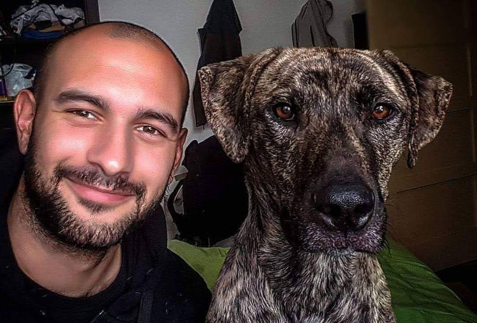 Vida de perros, por Andrés Peirano