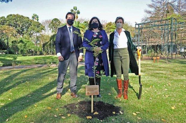 Luis Lacalle Pou, Faye O´Connor y Lorena Ponce de León, plantando un ibirapitá en la residencia presidencial en conmemoración por los 95 años de la Reina Isabel II - Foto: Instagram de Lorena Ponce de León